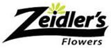 Zeidler's logo web